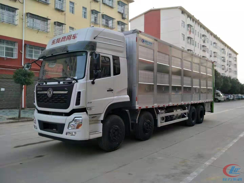 国六东风天龙恒温运猪车